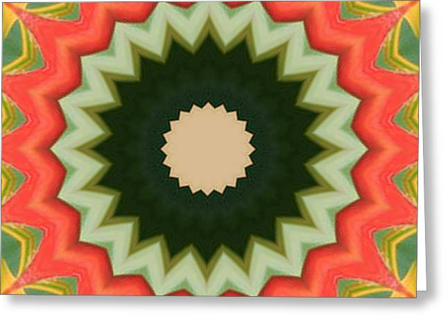Greeting Card featuring the photograph Bird Of Paradise Kaleidoscope by Bill Barber