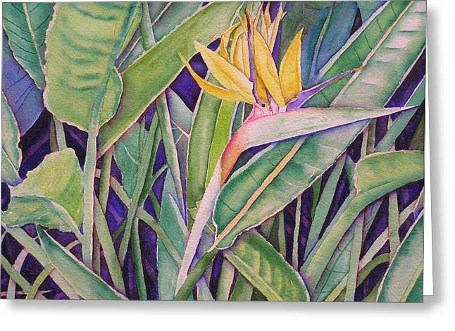 Bird Of Paradise Greeting Card by Laurie Balla