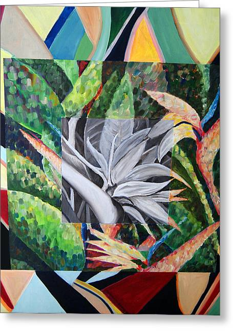 Bird Of Paradise Greeting Card by Mike Segura