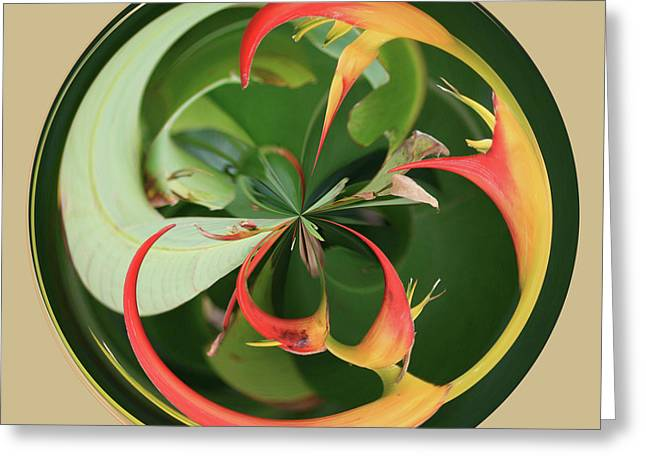 Greeting Card featuring the photograph Bird Of Paradise Orb by Bill Barber