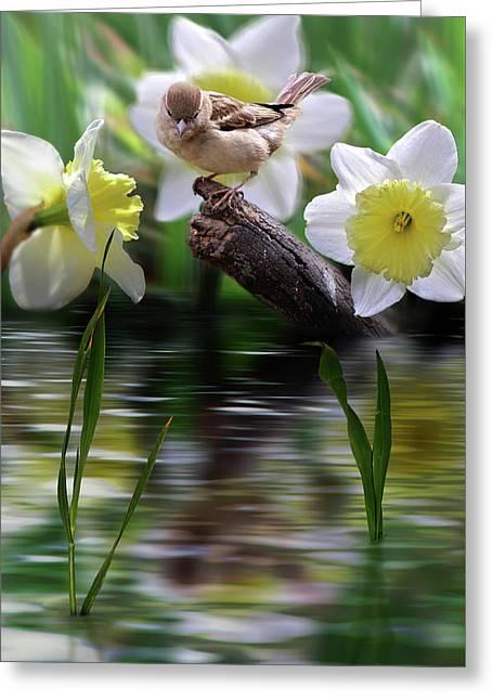 Bird On A Limb Greeting Card