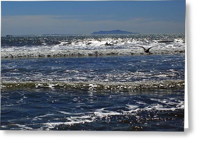Bird On A Wave Greeting Card by Robin Hernandez