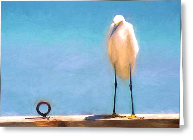 Bird On The Rail Greeting Card by Glenn Gemmell