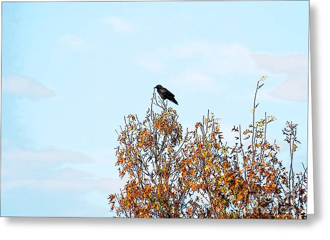Bird On Tree Greeting Card