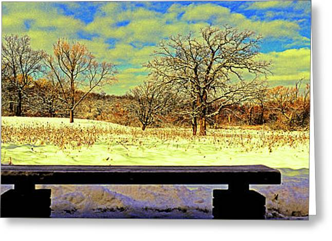Bird Watchers Bench Winter Crabtree Nature Center Cook County Il Greeting Card