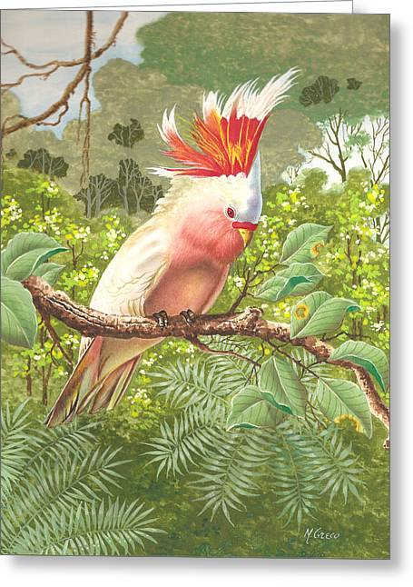 Cakatoo Greeting Card