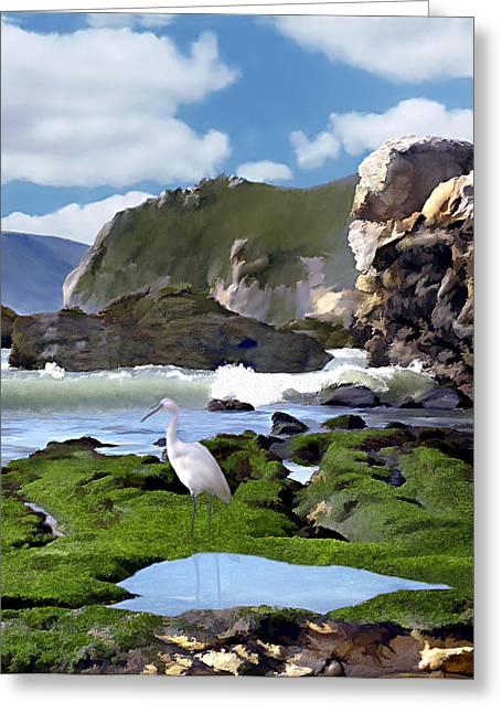 Bird's Eye View Greeting Card by Kurt Van Wagner