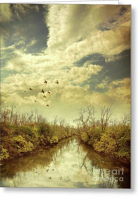 Greeting Card featuring the photograph Birds Flying Over A River by Jill Battaglia