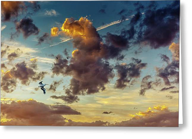 Birds In Flight At Sunset Greeting Card