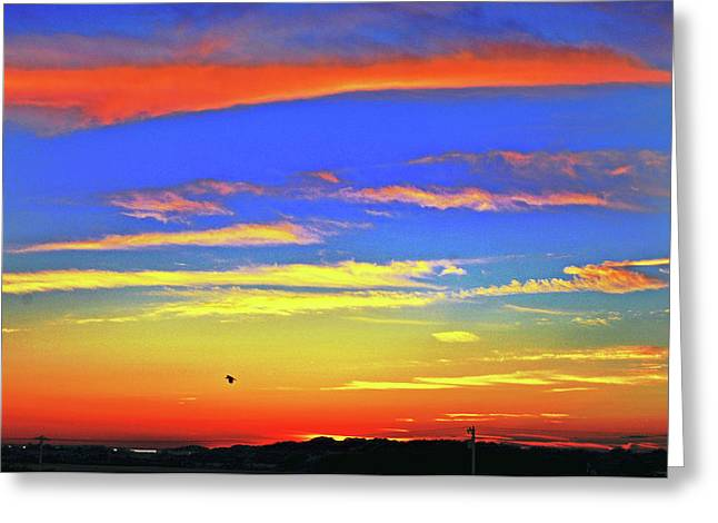 Birds In Nantucket Sunset From Eat Fire Spring Greeting Card by Duncan Pearson