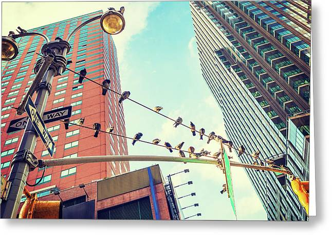 Birds In New York City Greeting Card