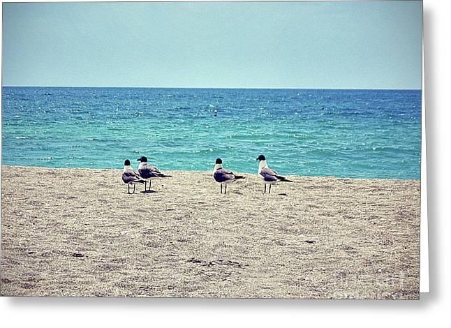 Birds On A Beach Greeting Card