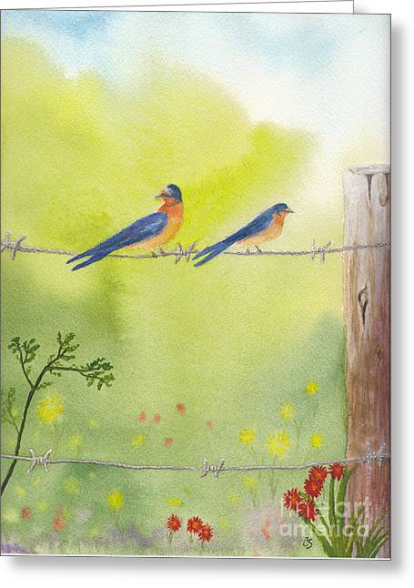 Birds On A Wire Barn Swallows Greeting Card by Conni Schaftenaar