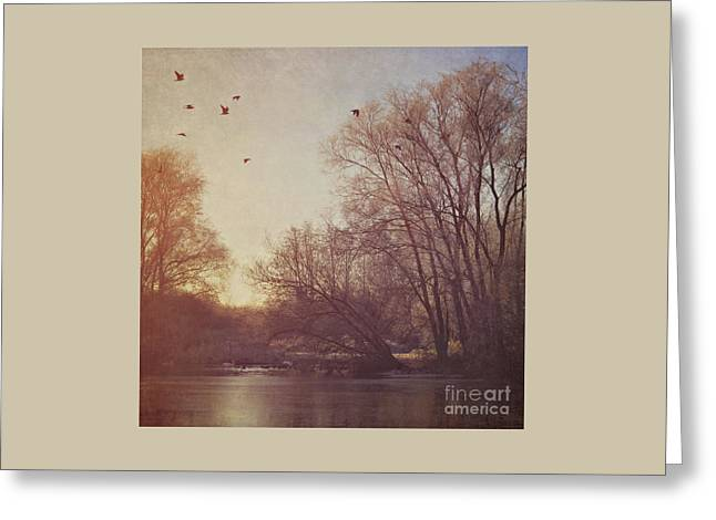 Greeting Card featuring the photograph Birds Take Flight Over Lake On A Winters Morning by Lyn Randle