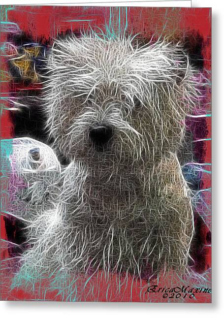 Greeting Card featuring the photograph Bishon Frise by EricaMaxine  Price
