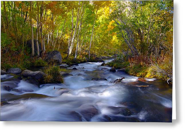 Bishop Creek In Fall Eastern Sierra Photograph Greeting Card