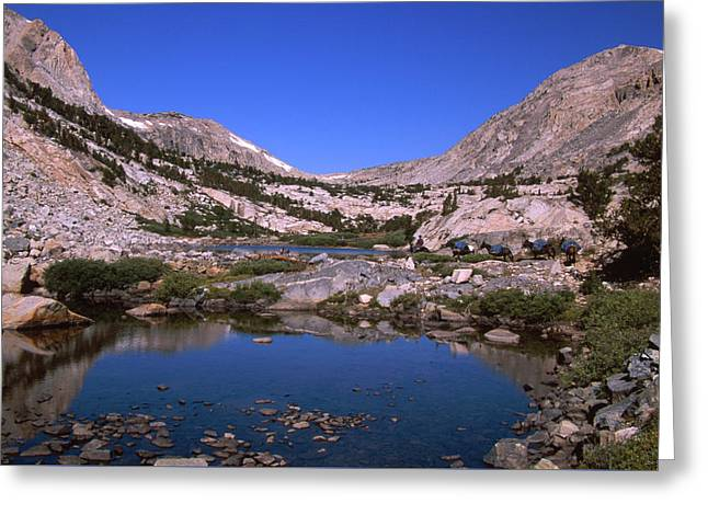 Bishop Pack Outfitters - Piute Pass Trail Greeting Card by Soli Deo Gloria Wilderness And Wildlife Photography