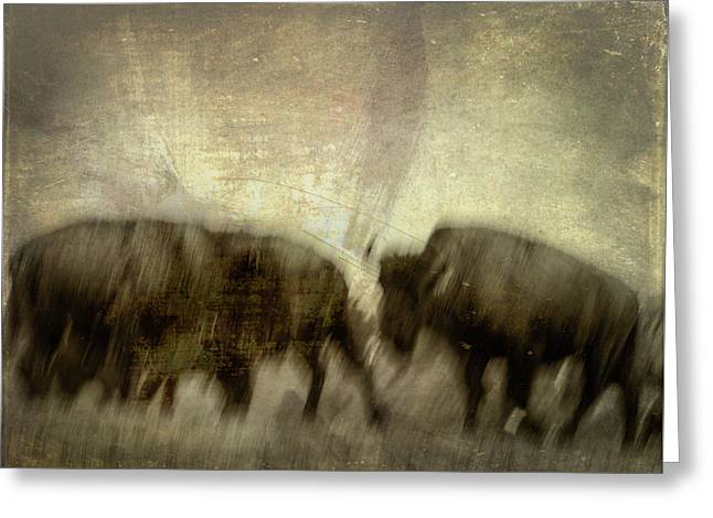 Greeting Card featuring the photograph Bison 3 by Joye Ardyn Durham