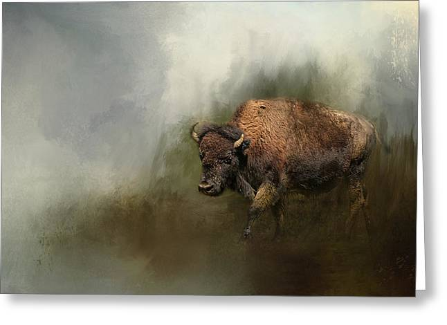 Bison After The Mud Bath Greeting Card by Jai Johnson