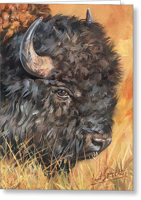 Greeting Card featuring the painting Bison by David Stribbling