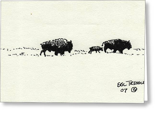 Bison Family Greeting Card by Eric Tressler