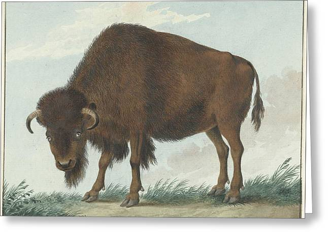Bison, Isaac Van Haastert, 1808 Greeting Card