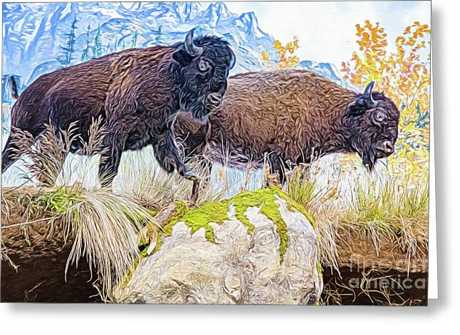 Greeting Card featuring the digital art Bison Pair by Ray Shiu