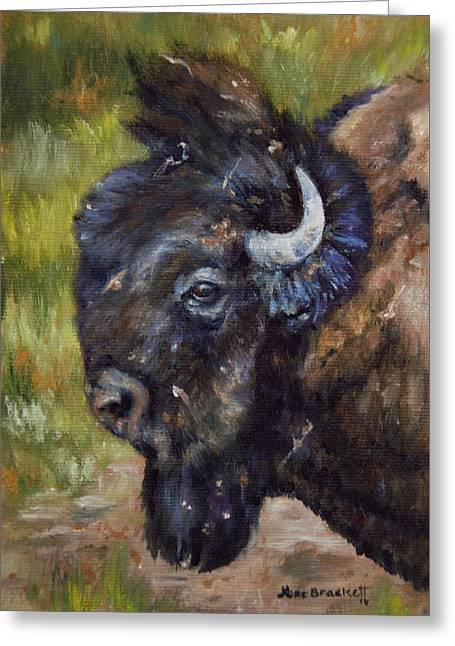Bison Study 5 Greeting Card