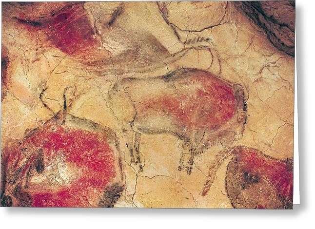 Bisons From The Caves At Altamira Greeting Card by Prehistoric