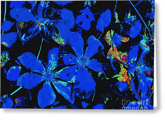 Greeting Card featuring the photograph Black And Blue Clematis - Digital Painting by Merton Allen