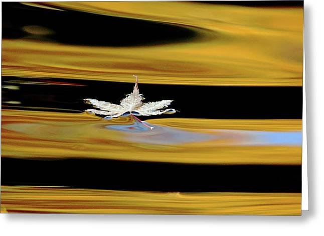 Black And Gold Autumn Abstract Greeting Card by Debbie Oppermann