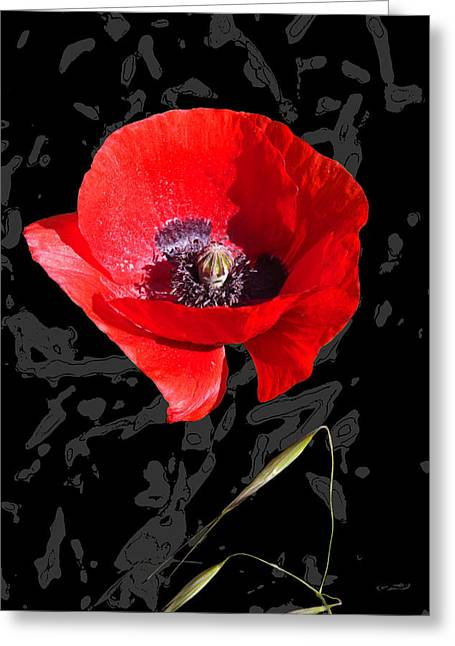 Black And Red Poppy Greeting Card by Martine Affre Eisenlohr