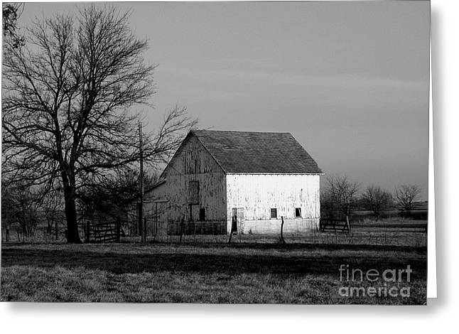 Black And White Barn Ll Greeting Card by Michelle Hastings