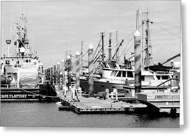 Black And White Boats In Washington Greeting Card by Dan Sproul