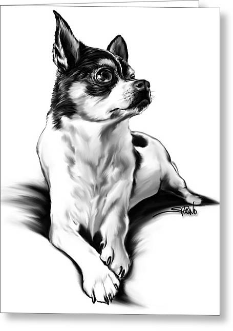 Black And White Chihuahua By Spano Greeting Card