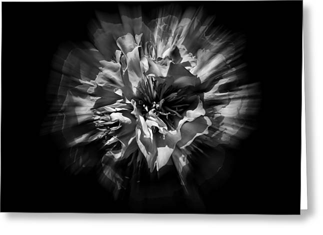 Black And White Flower Flow 1 Greeting Card by Brian Carson