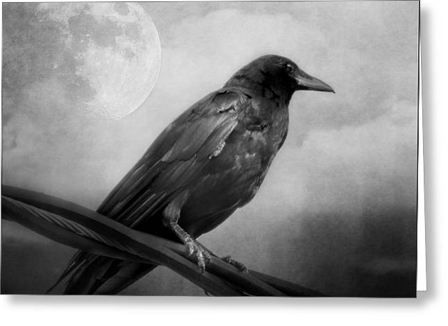 Black And White Gothic Crow Raven Art Greeting Card