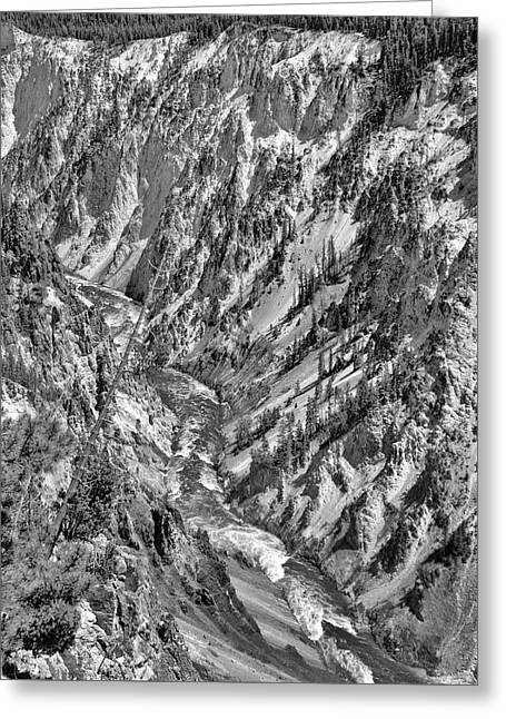 Black And White Grand Canyon Of Yellowstone Greeting Card