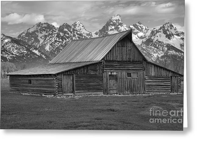 Black And White Mormon Row Barn Greeting Card by Adam Jewell