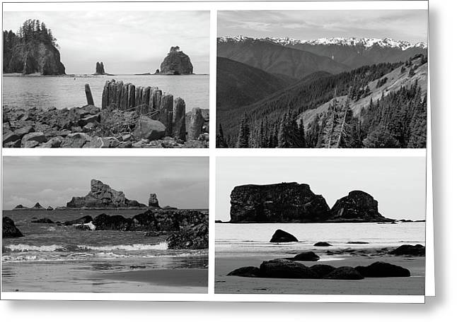 Black And White Olympic National Park Collage Greeting Card by Dan Sproul