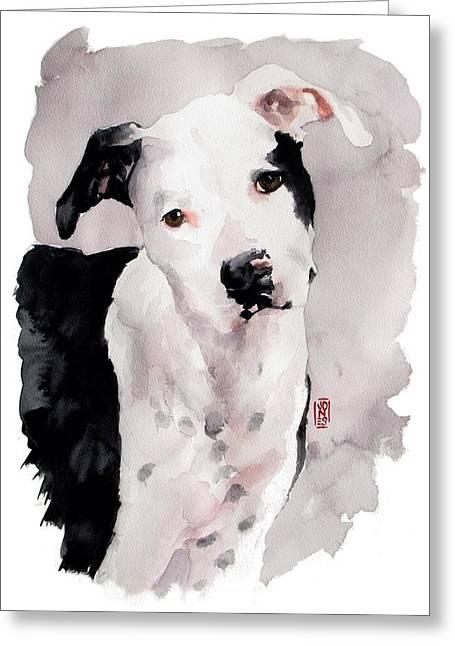 Black And White Pit Greeting Card by Debra Jones
