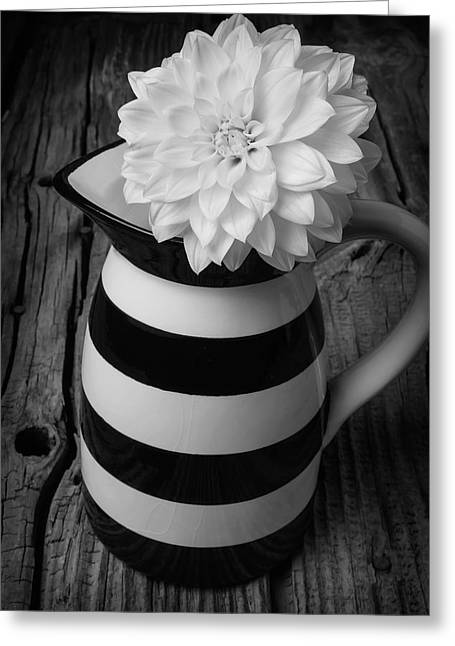 Black And White Pitcher With Dahila Greeting Card