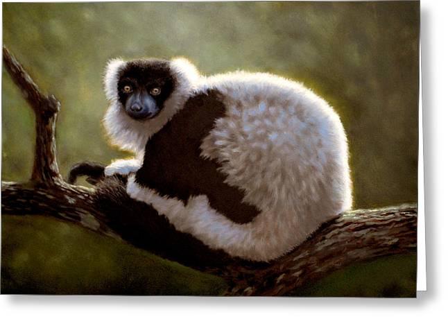 Black And White Ruffed Lemur Greeting Card
