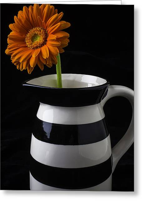 Black And White Vase With Daisy Greeting Card by Garry Gay