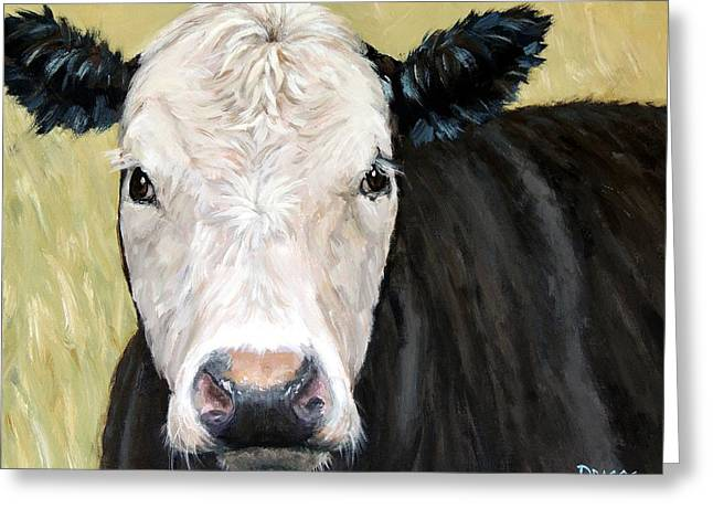 Black Angus Cow Steer White Face Greeting Card by Dottie Dracos