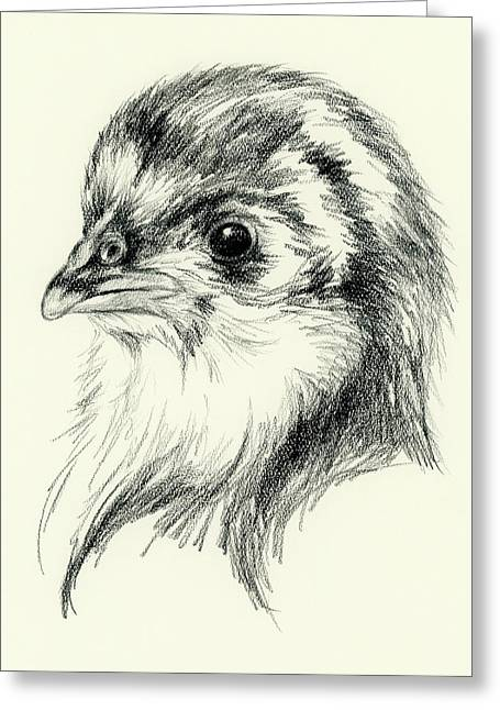 Black Australorp Chick In Charcoal Greeting Card