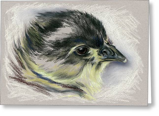 Black Australorp Chick Portrait Greeting Card