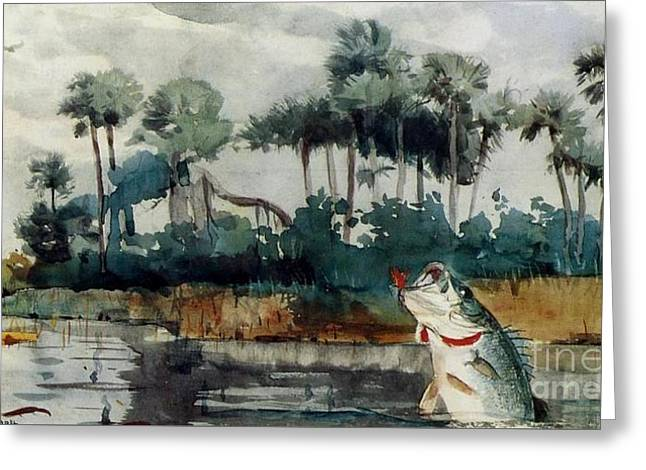 Black Bass Florida Greeting Card by Pg Reproductions