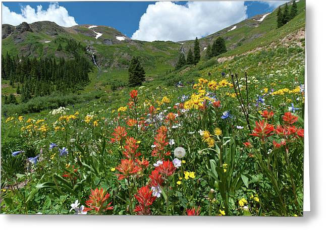 Greeting Card featuring the photograph Black Bear Pass Landscape by Cascade Colors