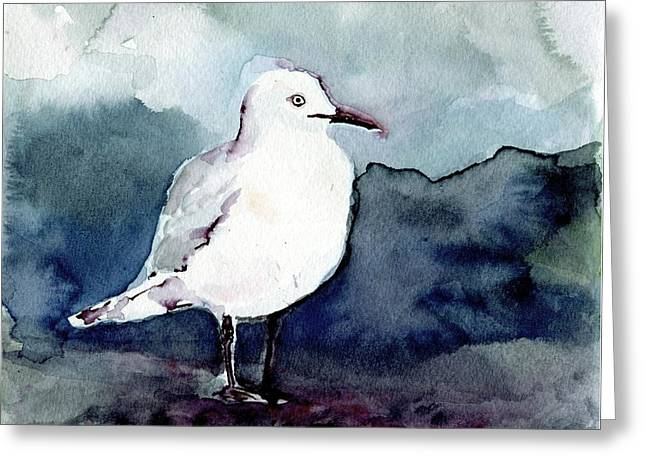 Black-billed Gull Greeting Card